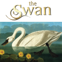 The Swan at Tytherington